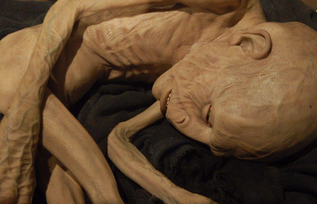 Het leven van Voldemort